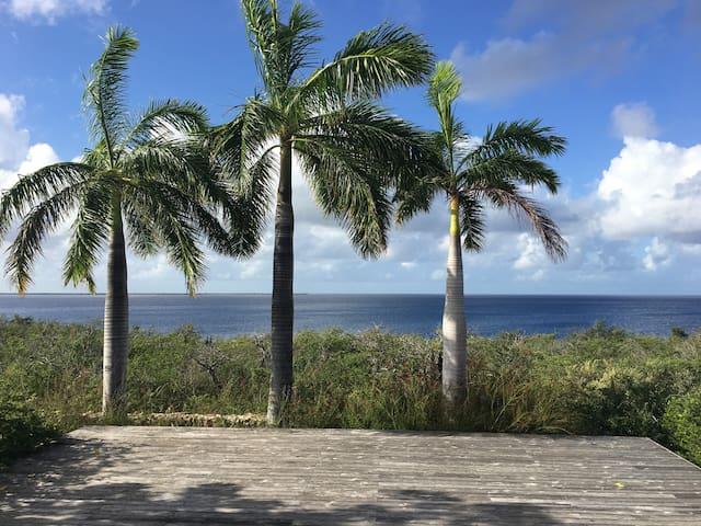 Stunning Oceanfront Villa, Private Reef/Sea Access