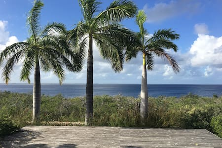 Stunning Oceanfront Villa, Private Reef/Sea Access