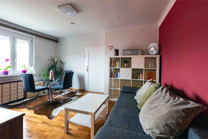 1 bedroom apartment in the heart of Vienna