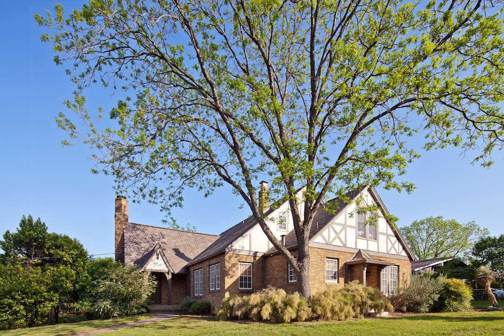 large pecan tree shades house