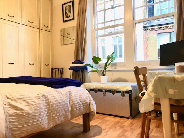 Airy Single in Marylebone Village
