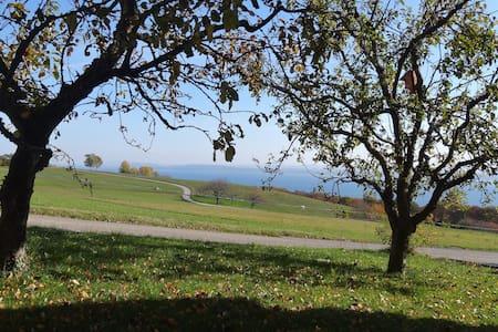 La terrasse du canton de Neuchâtel - Gorgier