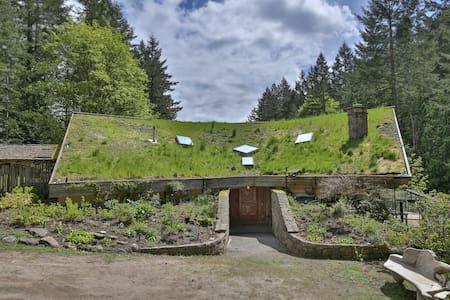 The Old Llama Farm & Sanctuary  - B&B
