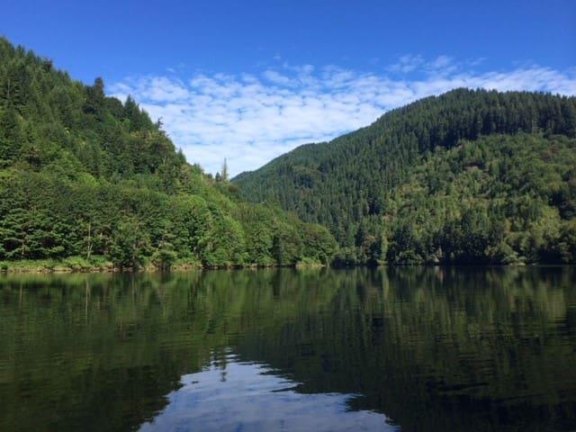 Umpqua River cabin with dock. Swim, Fish, Relax!