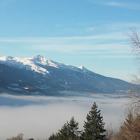Vercors : Gite L'Hysope , belle vue et forêt!