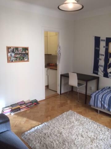 Lovely studioapartment Fridhemsplan - Stockholm - Apartment