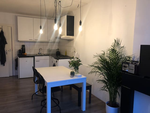 Lovely appartment, close to city centre and park