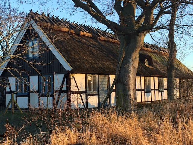 In Olseröds village, near the sea