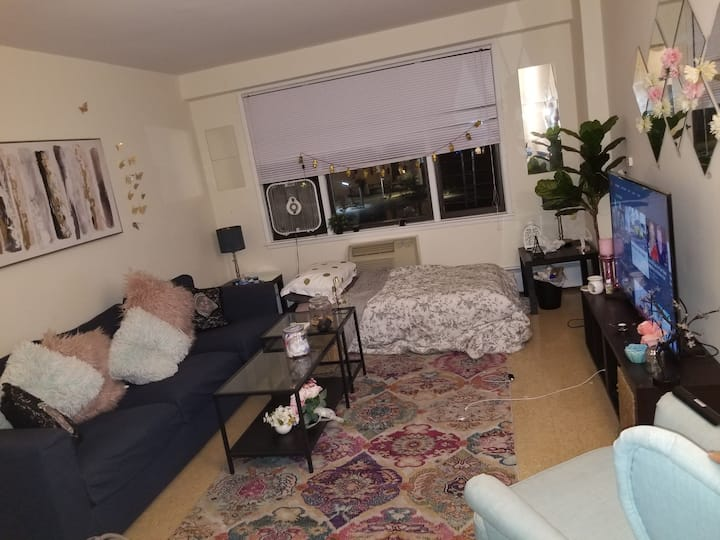 A big bed in a One bedroom apartment