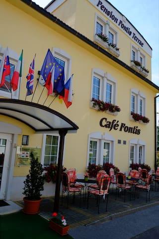 Penzión Fontis Terrae - Trenčianske Teplice - Bed & Breakfast