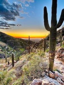 An oasis in the coveted Foothillls! - Tucson