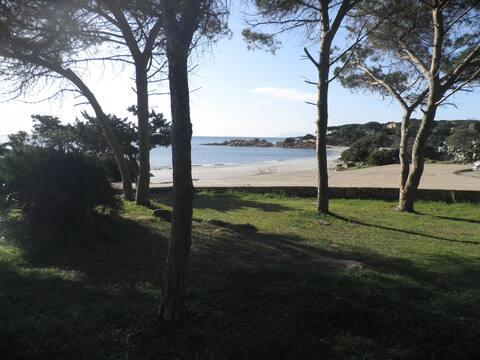 Casina sulla Spiaggia