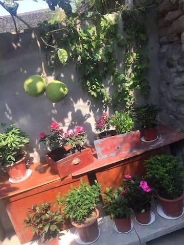 古城入口心有蔷薇一室一厅一厨一卫独立小院可住5人 - Nanchong
