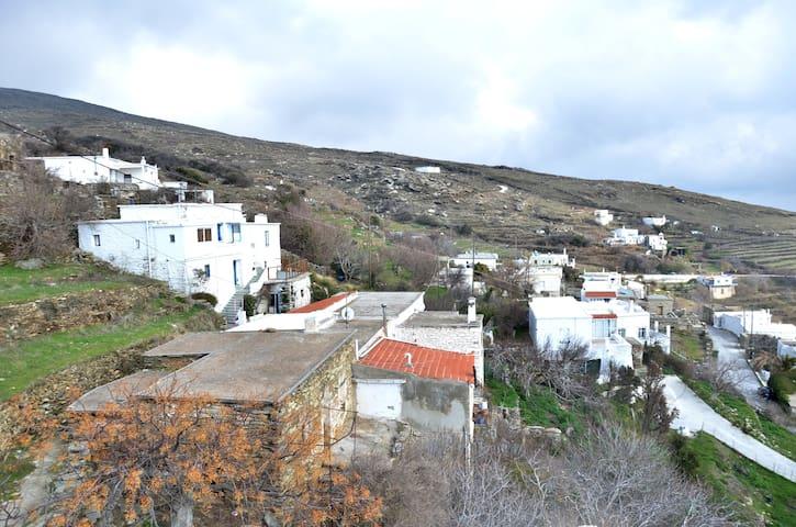 Hionati Pitrofou House - Andros - Dům
