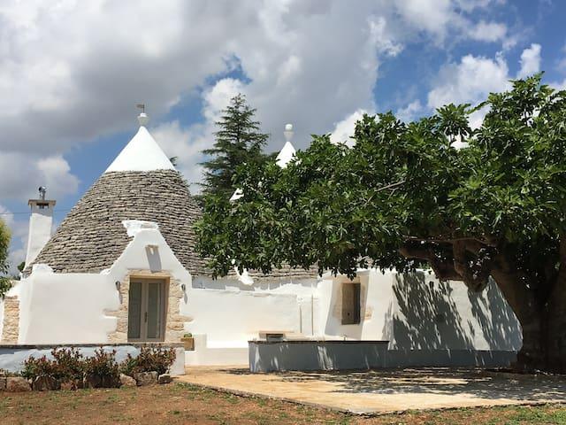Stunning Trullo del Fico - house - มาร์นิน่า ฟรังกา - บ้าน