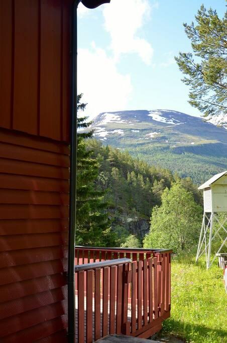 Utsikt fra terassen.