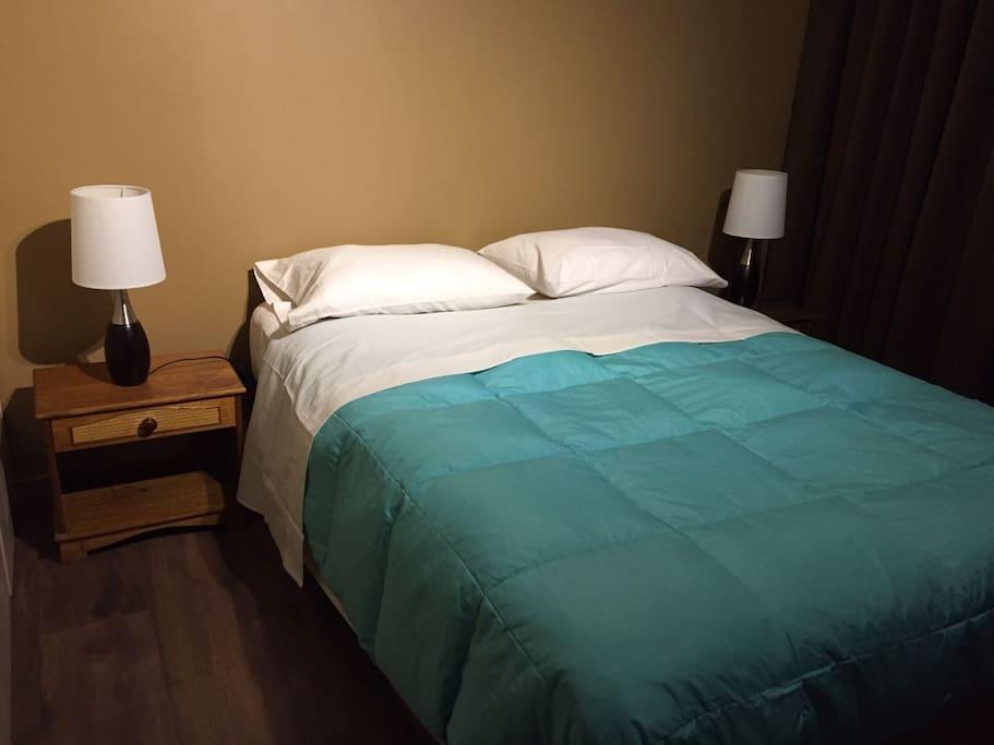 Espacioso dormitorio principal que cuenta con una cama tamaño matrimonial, dos veladores, dos luces de mesa, TV y amplio clóset. Cuenta con ventanas grandes con una fantástica vista.