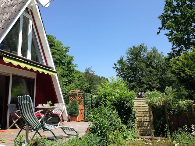 Sonniges Nur-Dach-Ferienhaus Pfalz - Gossersweiler-Stein  - Feriehus
