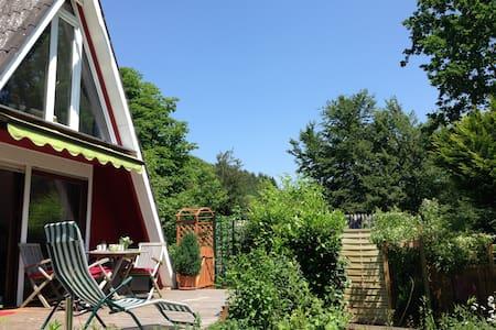 Sonniges Nur-Dach-Ferienhaus Pfalz - Gossersweiler-Stein  - Dům
