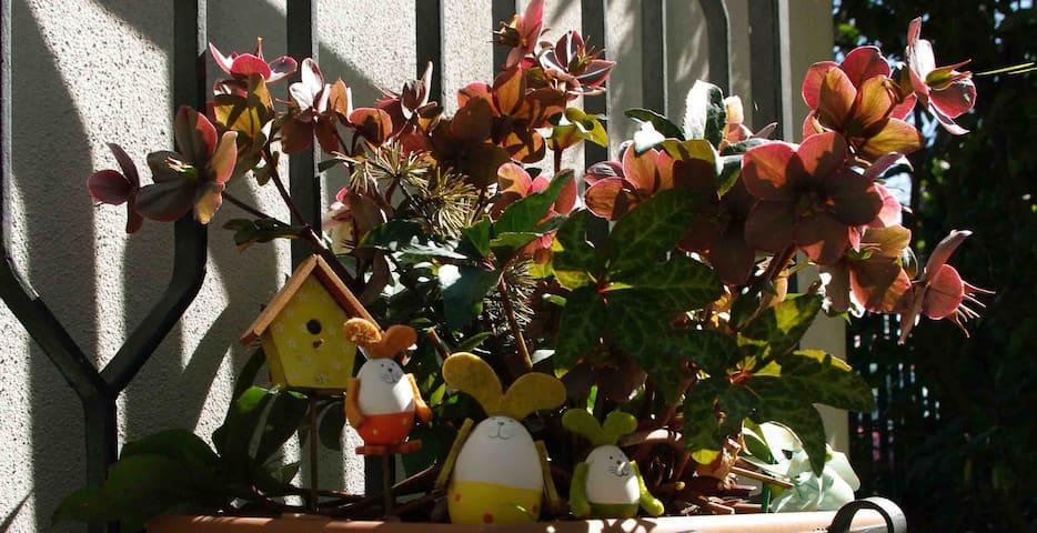 B&B Tre conigli sul comò - Camera Lavanda