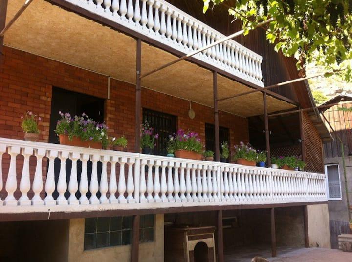 guesthouse - Borjomi - in rustaveli street 21