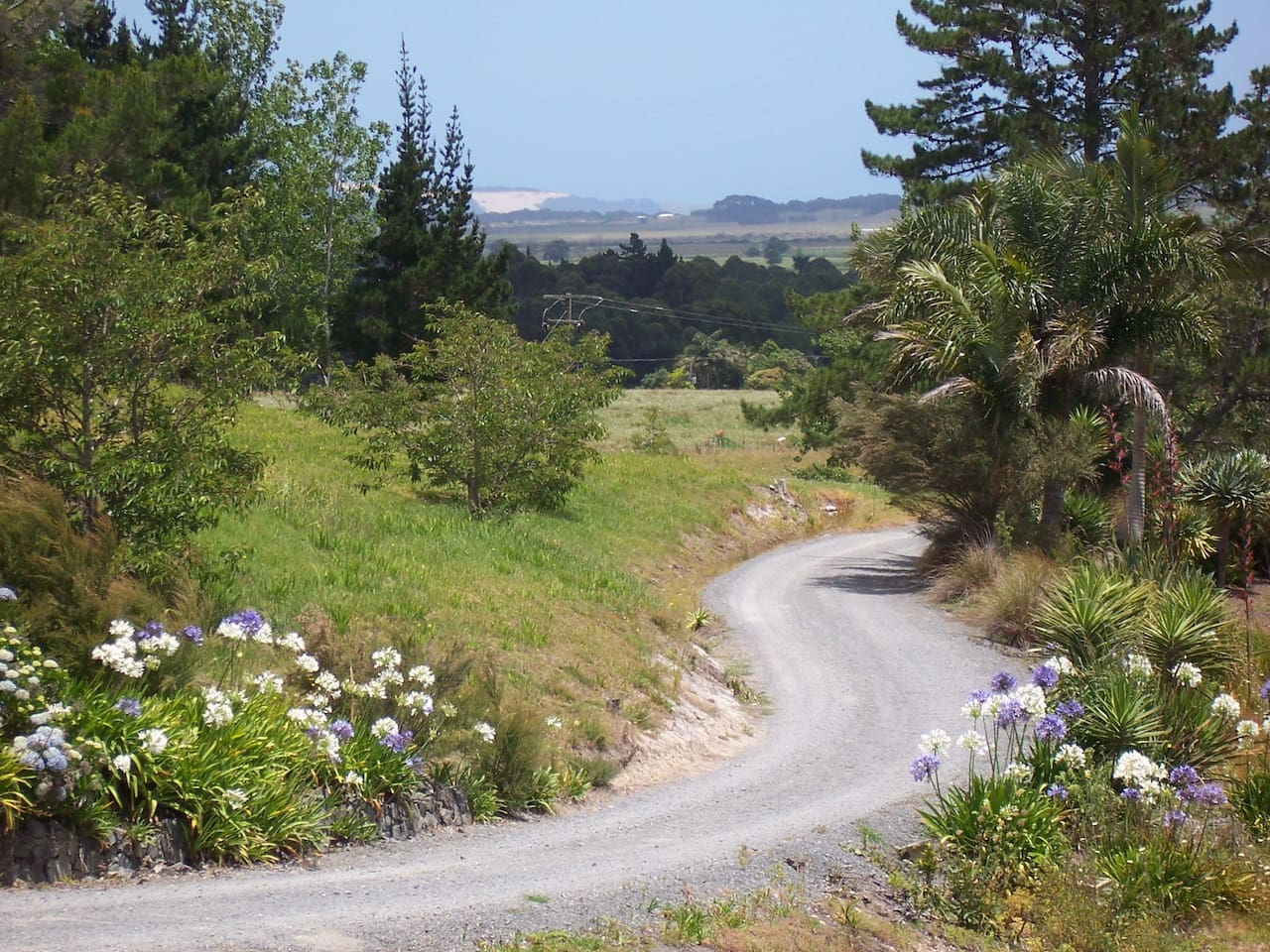 Views to the Ahipara sandhills from the driveway and house