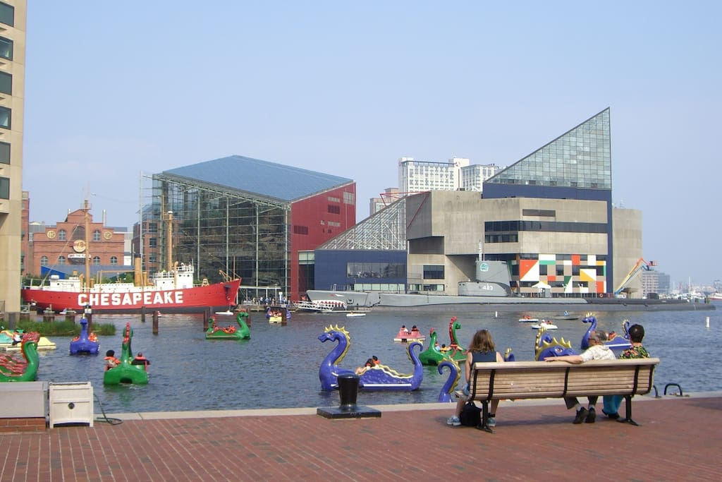 world famous inner harbor, just 10 mins by walk.