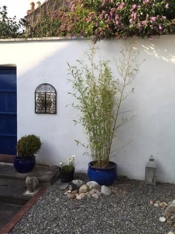 Town Garden/ Patio