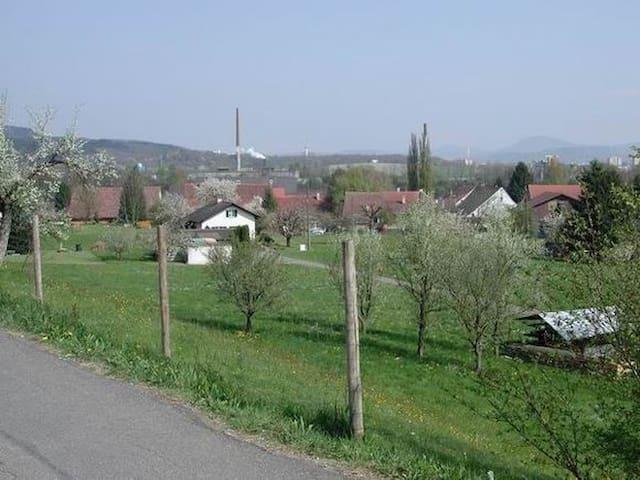 Wallbach mit seinen grünen Wiesen