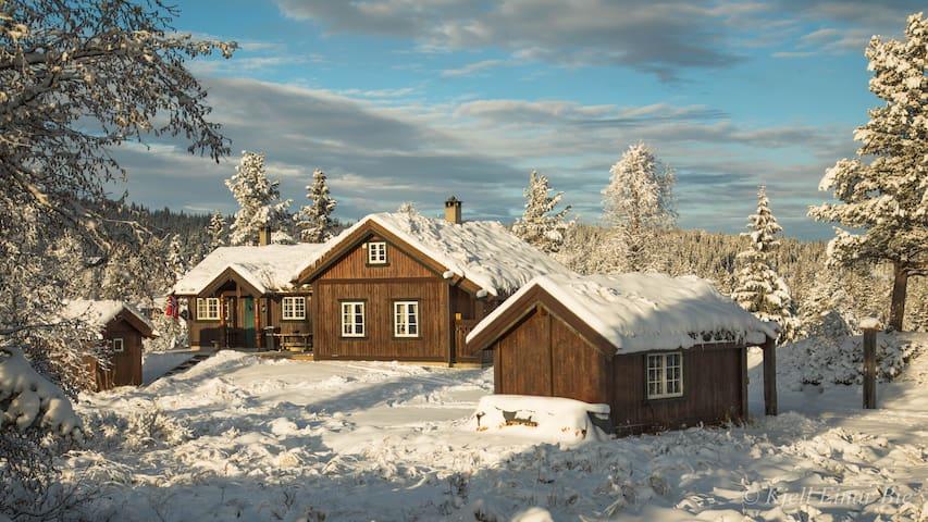 Romslig familiehytte på Gol, nær Hemsedal.