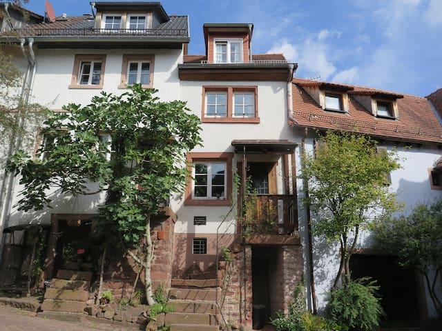 Ferienhaus bei Heidelberg in herrlicher Umgebung - Neckargemünd