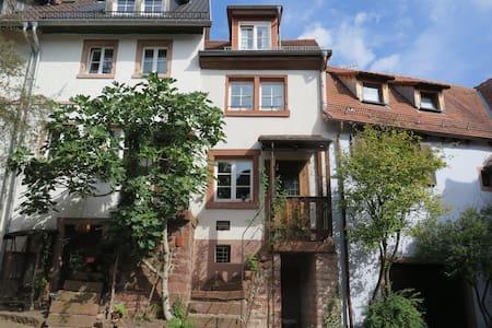 Ferienhaus bei Heidelberg in herrlicher Umgebung - Rumah