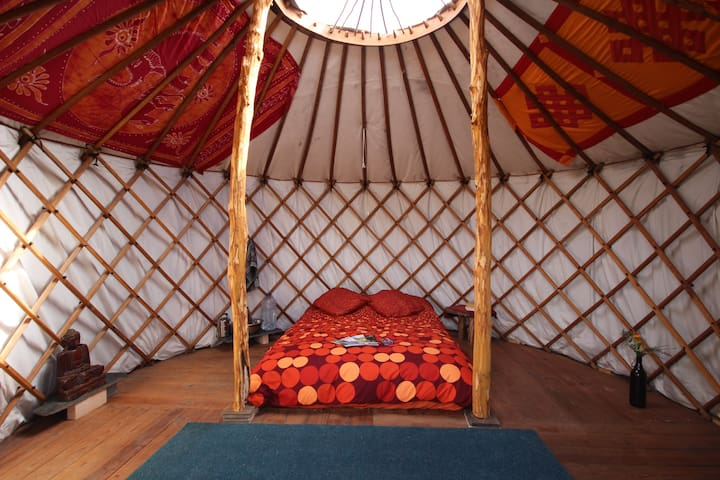 Mountain-side yurts with amazing views - Colmeal