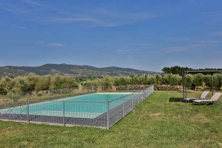 Apartment in the heart of Tuscany - Vinci - Bed & Breakfast