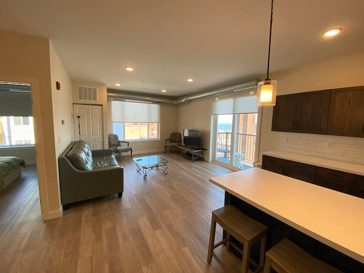 LakeView Suite in Downtown Duluth