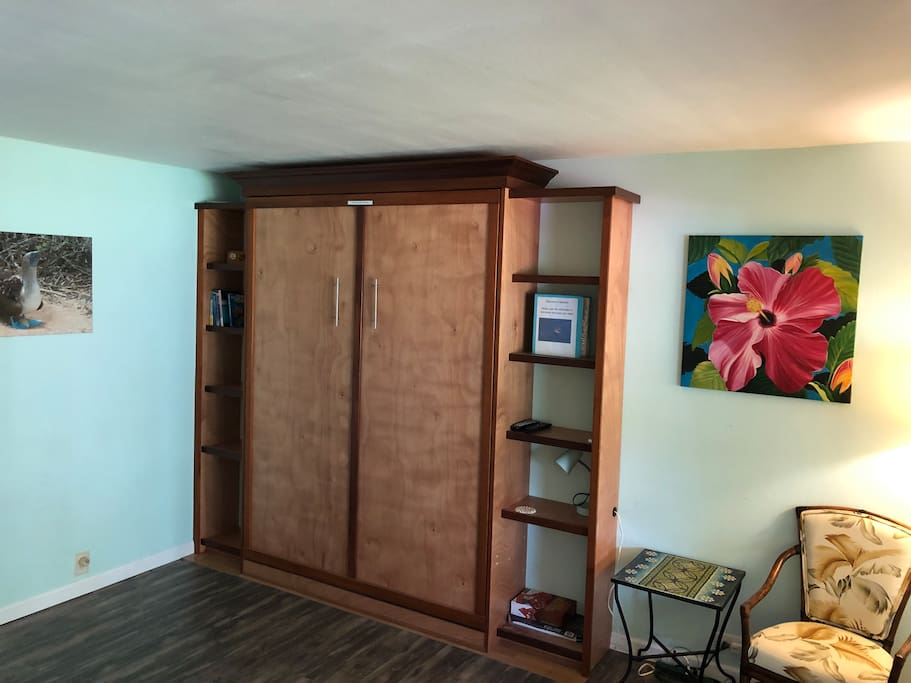 Queen-size Murphy bed in the closed position.