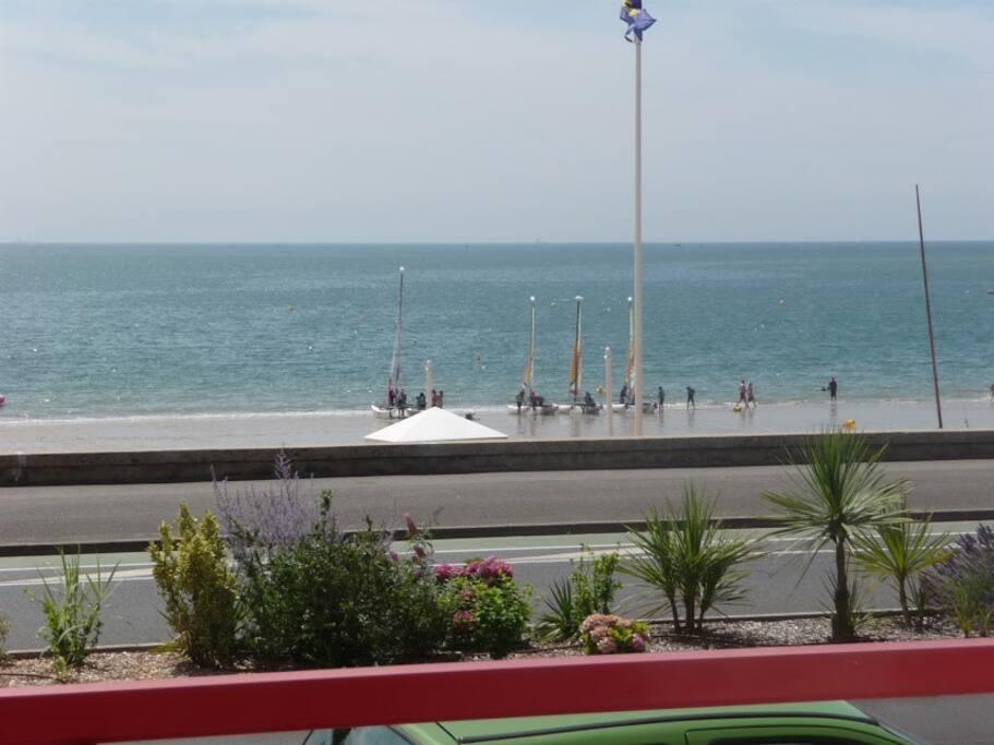 la vue de la terrasse: le Parc à bateaux à voile
