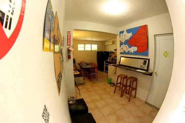 Hostel Tropical - Isabela - House