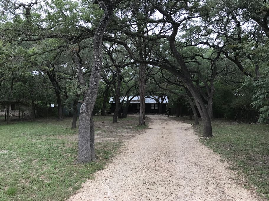 The driveway up to the house. It is discreet from the gravel road.