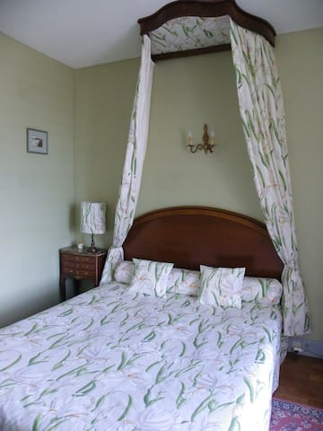 Unequivalent Junior Suite and view over the Loire
