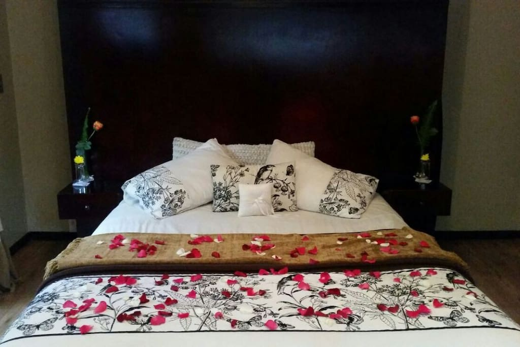 All Guest Rooms have Queen Beds for comfort and luxury.
