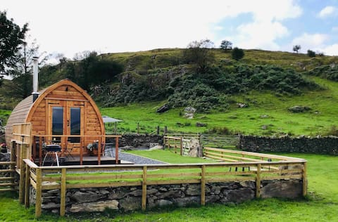 Picturesque pod set in the Welsh countryside