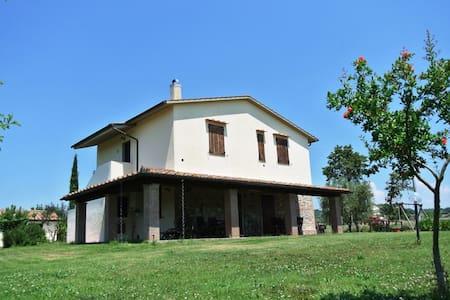 Nonno Tobia - Il Fontanile, sleeps 4 guests - Magliano in Toscana - Villa