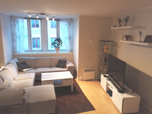 Cozy apartment located in central Trondheim