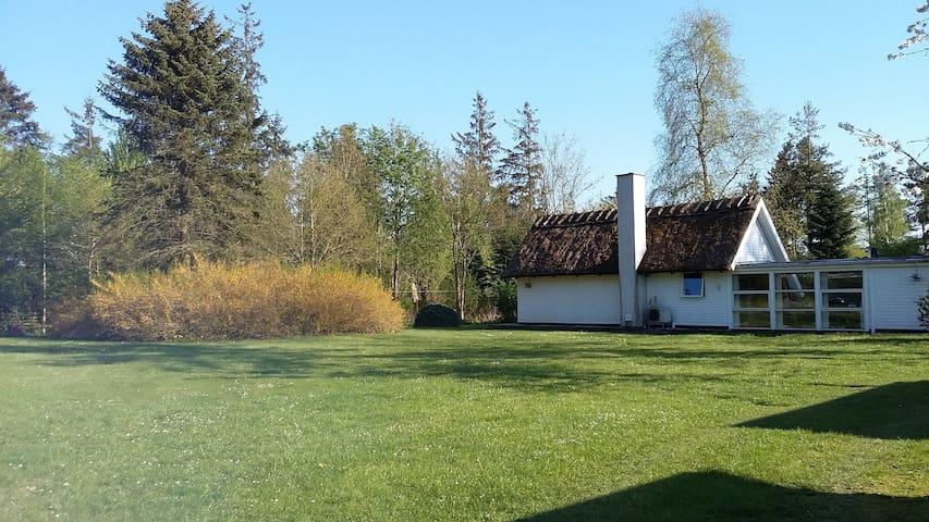 Idyl ved Åmosen i Verup, Dianalund - Dianalund - House