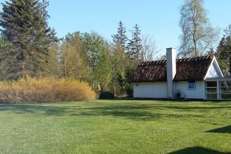 Idyl ved Åmosen i Verup, Dianalund - Dianalund - Haus