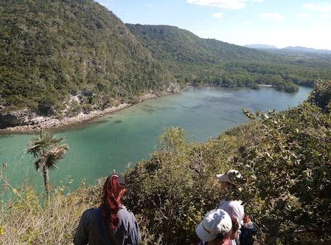 IIMontecorales Meer, Fluss, Berg, Strand und Korallen