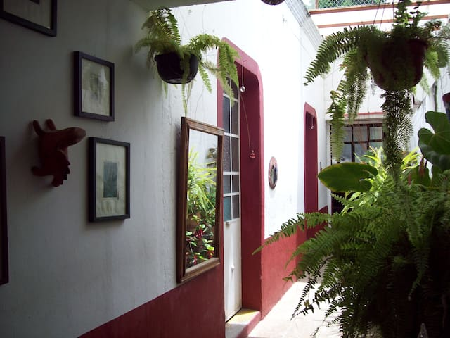 Hall and garden.