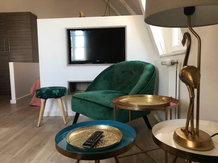 Studio 45, au coeur du centre historique de Rodez