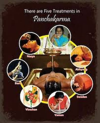 Indra Yoga & Panchakarma Treatments Holidays !